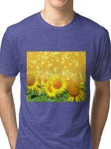 Light Field Tri-blend T-Shirt