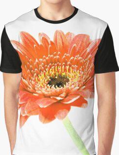 The colour Orange Graphic T-Shirt
