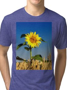 Not Belong Tri-blend T-Shirt