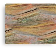 Natural Colorful Sandstone Texture  Canvas Print