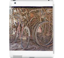 Any Tandems? iPad Case/Skin