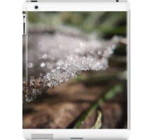 Frosty Leaf iPad Case/Skin