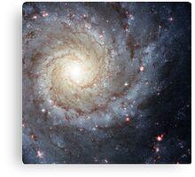Spiral galaxy M74 Canvas Print