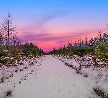 Moel Famau in the snow by Paul Madden