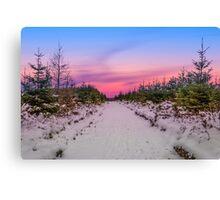 Moel Famau in the snow Canvas Print