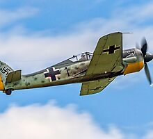 Flug Werk nachbau Fw 190A-8N F-AZZJ by Colin Smedley