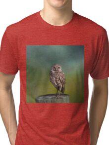 The Watcher Tri-blend T-Shirt
