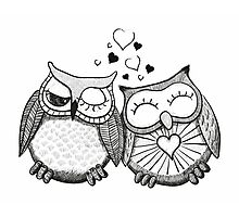 Cute black and white owl couple Photographic Print