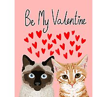 Cat valentines tabby cat siamese cat lady gifts cute kitten heart love Photographic Print