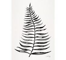 Black Palm Leaf Photographic Print