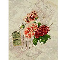 Decoupage 2 Photographic Print
