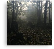Misty graveyard Canvas Print