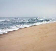 I love walking on the beach in the middle of winter. I always feel warmer. by alan shapiro