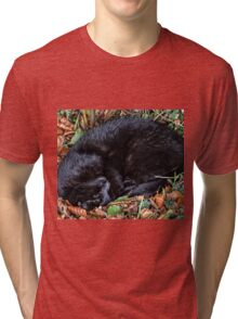 Guess who l found under the Hedgerow.. Tri-blend T-Shirt