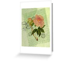 Decoupage 4 Greeting Card