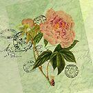 Decoupage 4 by venitakidwai1