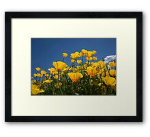 A Little Sunshine Framed Print