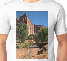Beauty in the Canyon Unisex T-Shirt