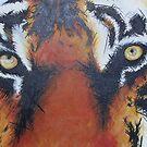 Tiger Eyes by Andy  Housham