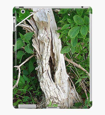 Decayed Tree Stump iPad Case/Skin