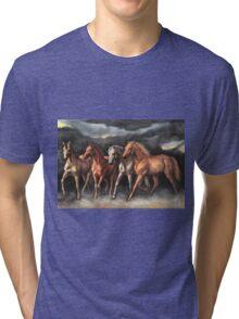 Storm Stallions Tri-blend T-Shirt