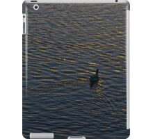 Lonely Duck Swimming at Lake at Sunset Time iPad Case/Skin