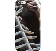 What is it? iPhone Case/Skin
