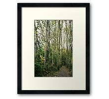 Trees are giants. Framed Print