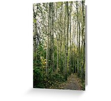 Trees are giants. Greeting Card