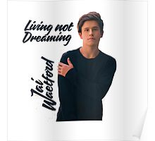 Living not Dreaming Poster