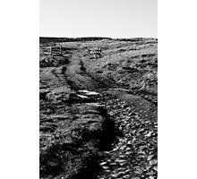 Wire Fences Photographic Print