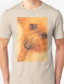 Adorable small pet dog in tones of Red T-Shirt