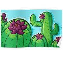 Cactus Flower Poster