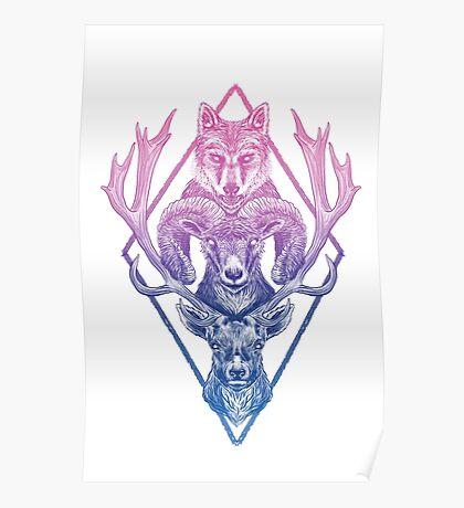 Wolfram Hart (Color) Poster