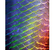 fish scales Photographic Print