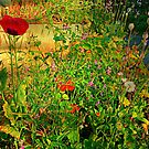The Unkempt Irish Garden by Fara