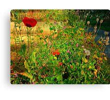 The Unkempt Irish Garden Canvas Print