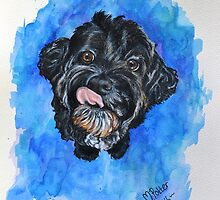 Poh the Cavoodle by Michelle Potter