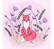 Beautiful Fox in the Garden Photographic Print