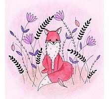 Beautiful Fox in the Garden Photographic Print