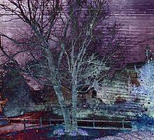 Purple Skies of Winter by Susan Werby