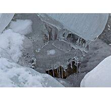 The Ice Elephant Photographic Print