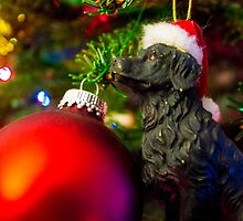 Puppys Christmas by DustyHolidays