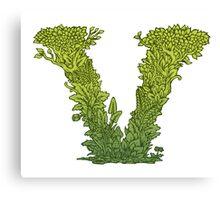 V is for Vegetarian, Vegan, Vitality.  Canvas Print