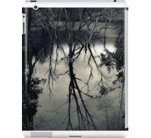 Sturt Gorge iPad Case/Skin