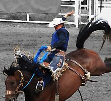 Rodeo! by Alyce Taylor