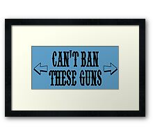 Can't ban these guns Framed Print