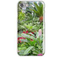A Winter Path iPhone Case/Skin
