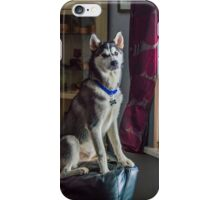 Boss of the House iPhone Case/Skin