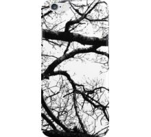 Silhouetted Branches iPhone Case/Skin